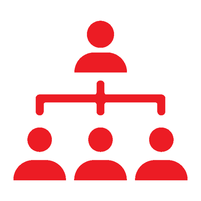 Primary management red
